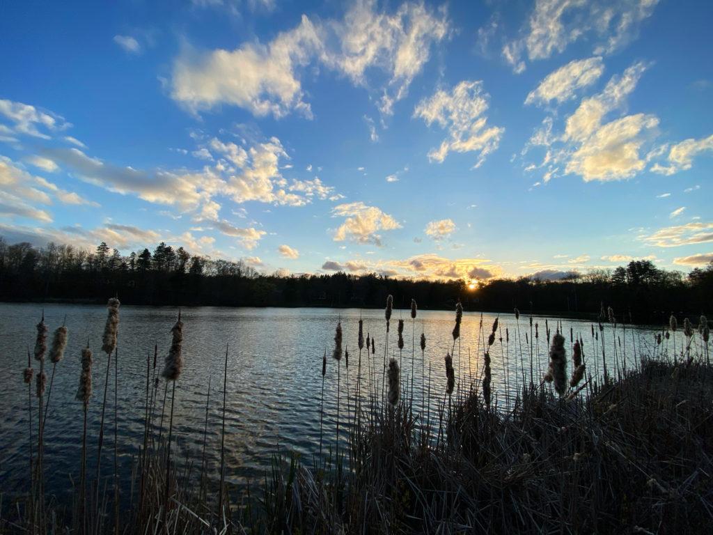 Sunset at Paw Paw Lake in Chagrin Falls, Ohio